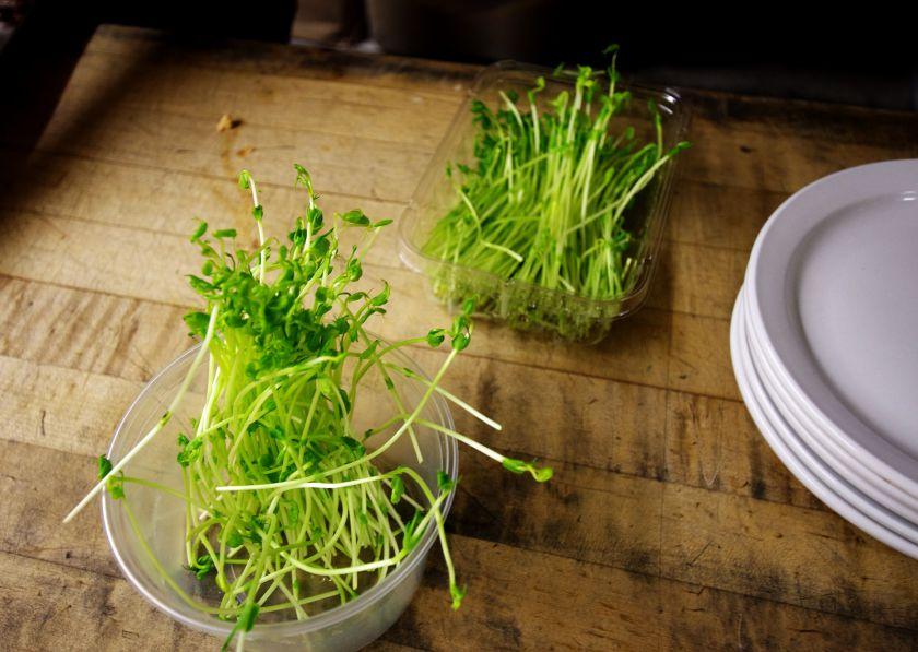 Daigintos sėklos – lengvas būdas pastiprinti organizmą vitaminais