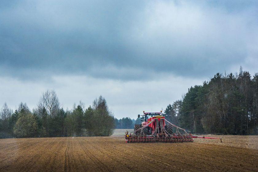 Lietuvoje vystoma nauja avižų veislė – tikimąsi švariausios pasaulyje titulo