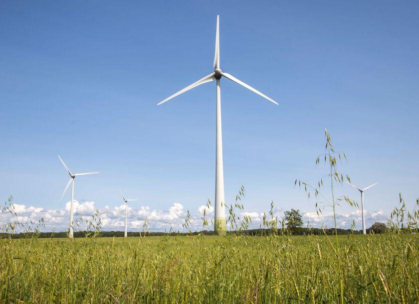 Vėjo jėgainių šalyje kyla vis daugiau, bet neracionalios baimės lieka
